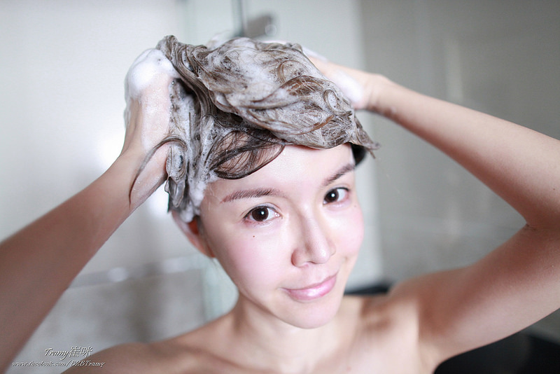 崔咪推薦,淨平衡洗髮評價,saholea森歐黎漾,男友最愛,洋甘菊洗髮精,