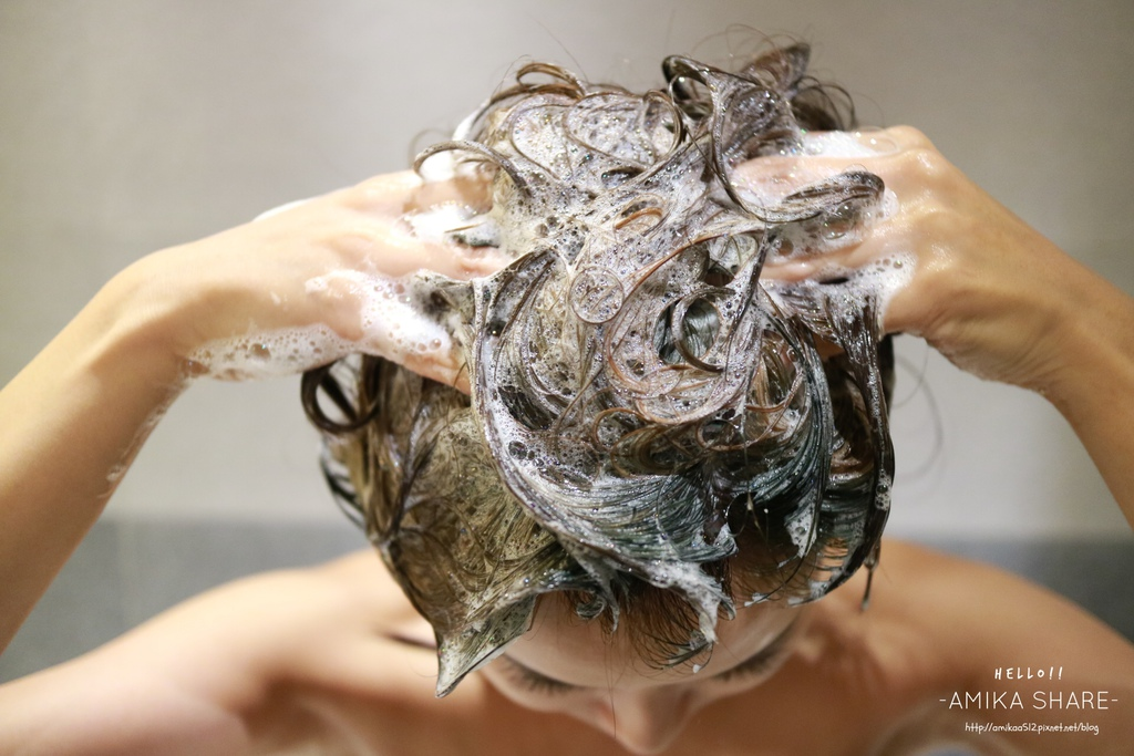 頭皮按摩,頭皮清潔,頭髮蓬鬆,油頭,洗髮精推薦,淨平衡,
