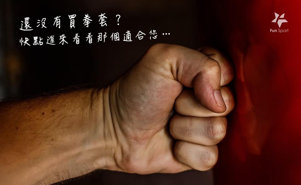 拳擊手套 / MMA手套