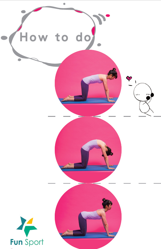 貓牛式瑜珈yoga