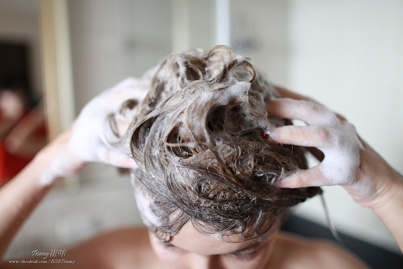 洗頭皮,頭臭,油頭,控油洗髮推薦,蓬鬆洗髮精推薦,saholea洗髮精,崔咪推薦<崔咪愛用,
