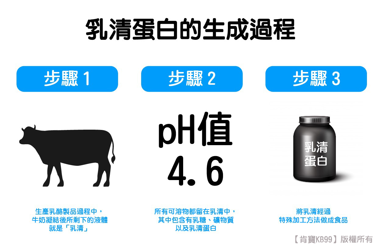 乳清蛋白的製程