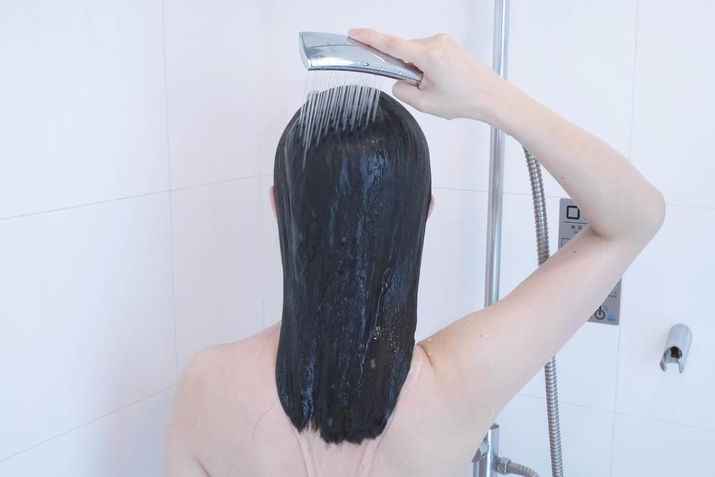 無矽靈洗髮精,無矽靈洗髮精推薦,柔順洗髮精,控油洗髮精,蓬鬆洗髮精,