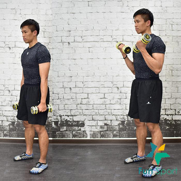 練手臂 -啞鈴運動