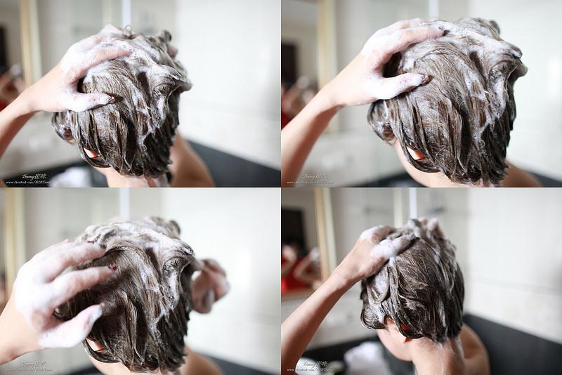 洗髮精推薦,洗髮推薦,控油洗髮,saholea淨平衡,洗髮按摩,洗髮步驟,