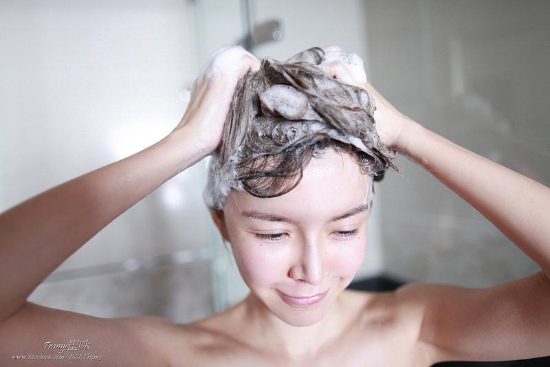天然洗髮精,植萃洗髮精,控油洗髮精,洋甘菊洗髮精,胺基酸洗髮精,