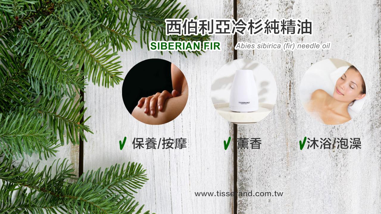Siberian Fir精油使用方式 Abies sibirica (fir) needle oil