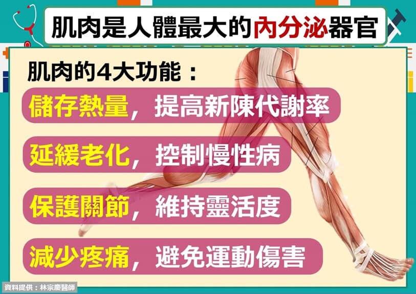 肌肉健康-肌耐力-養肌肉的好處