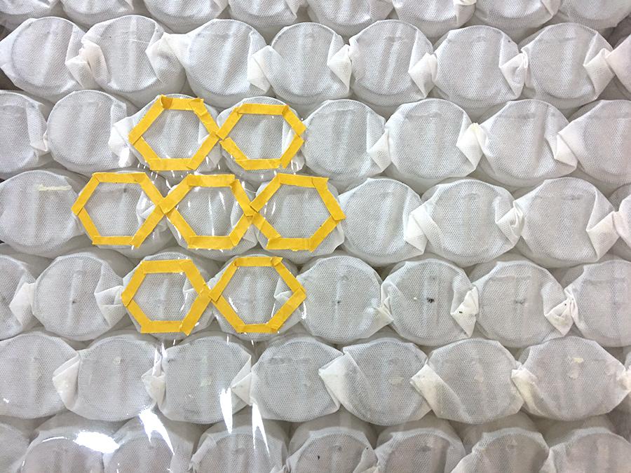 蜂巢式獨立筒