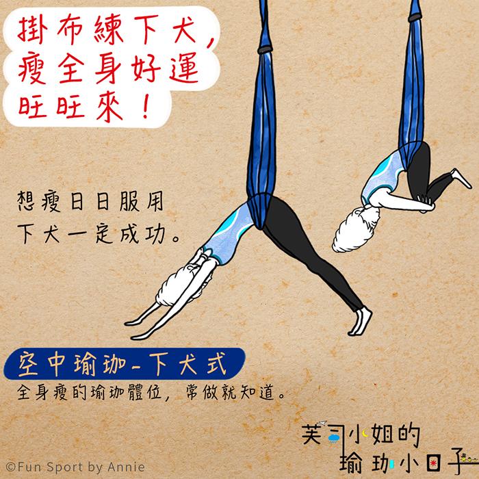 空中瑜珈-下犬式