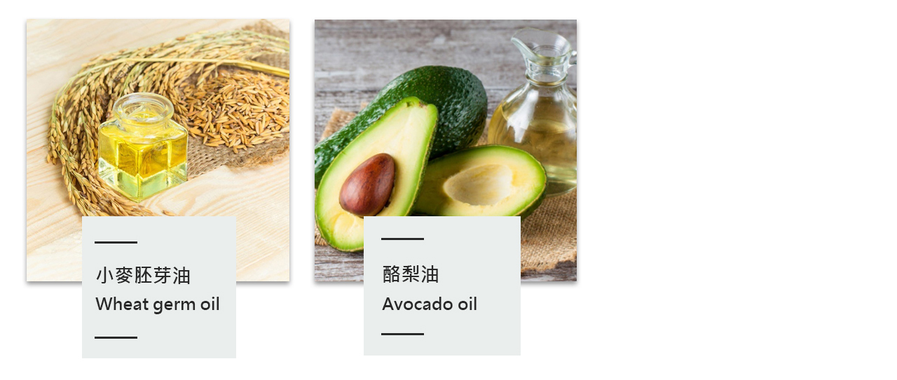 酪梨油,小麥胚芽油,成分,成份,介紹,分析,簡介,皮膚,好處