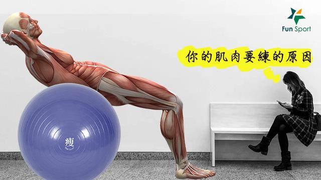你的肌肉要練的原因,肌力提升才能心血管健康!