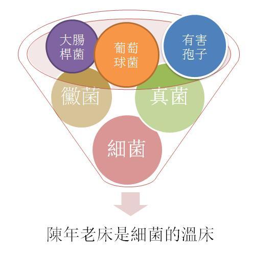 描述: http://www.mrbed.com.tw/resources/site/1515567827448.jpg