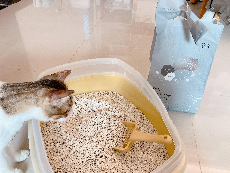 雪玉豆腐砂容量比市售高出50%