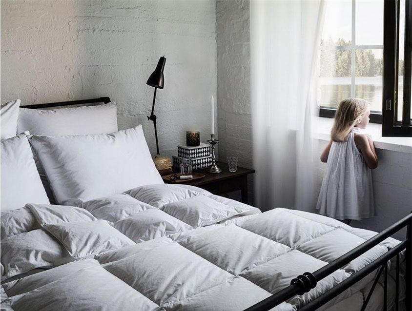 枕頭、被子多久該換