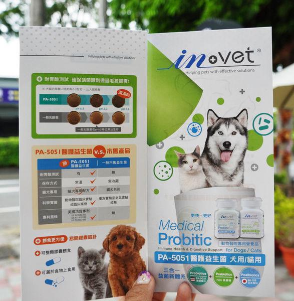 【IN-Vet】貓用-醫護益生菌 (30粒/瓶)(貓保健品)